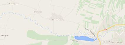 Trzykosy Google map