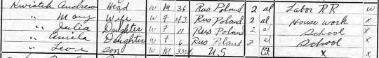 1915 Kwiatek NY census cropped