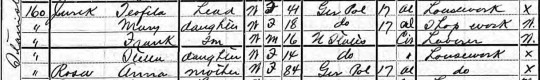 1905 Jurek Rosa NYS census cropped